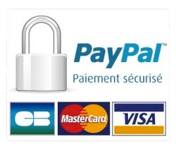 icone-paypal